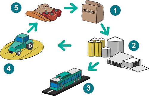 Matavfall blir både biogas och biogödsel