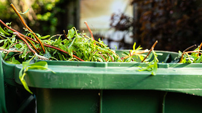 Hämtning av trädgårdsavfall
