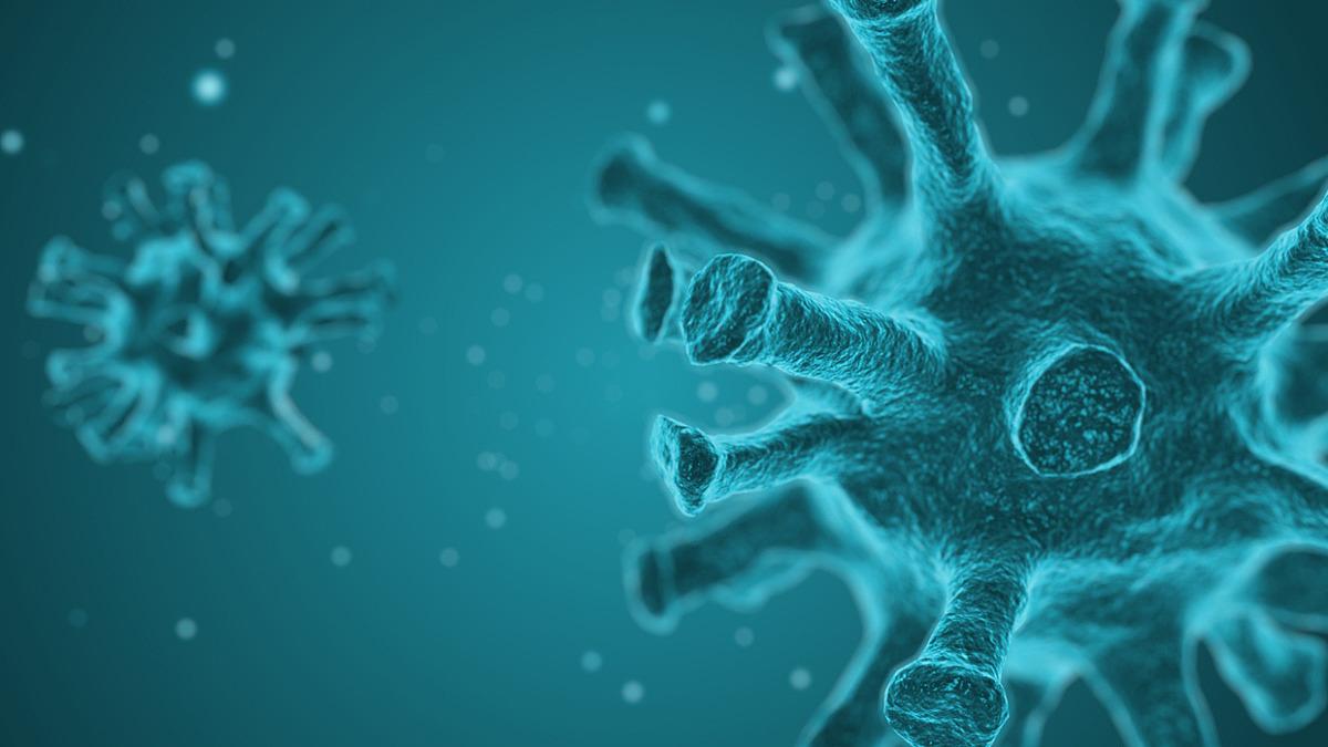 Information om corona-viruset