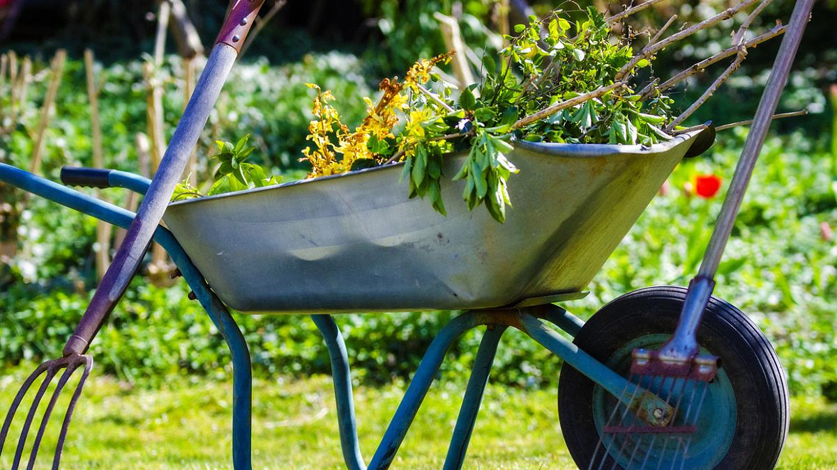 Grönyta för trädgårdsavfall i Båstad