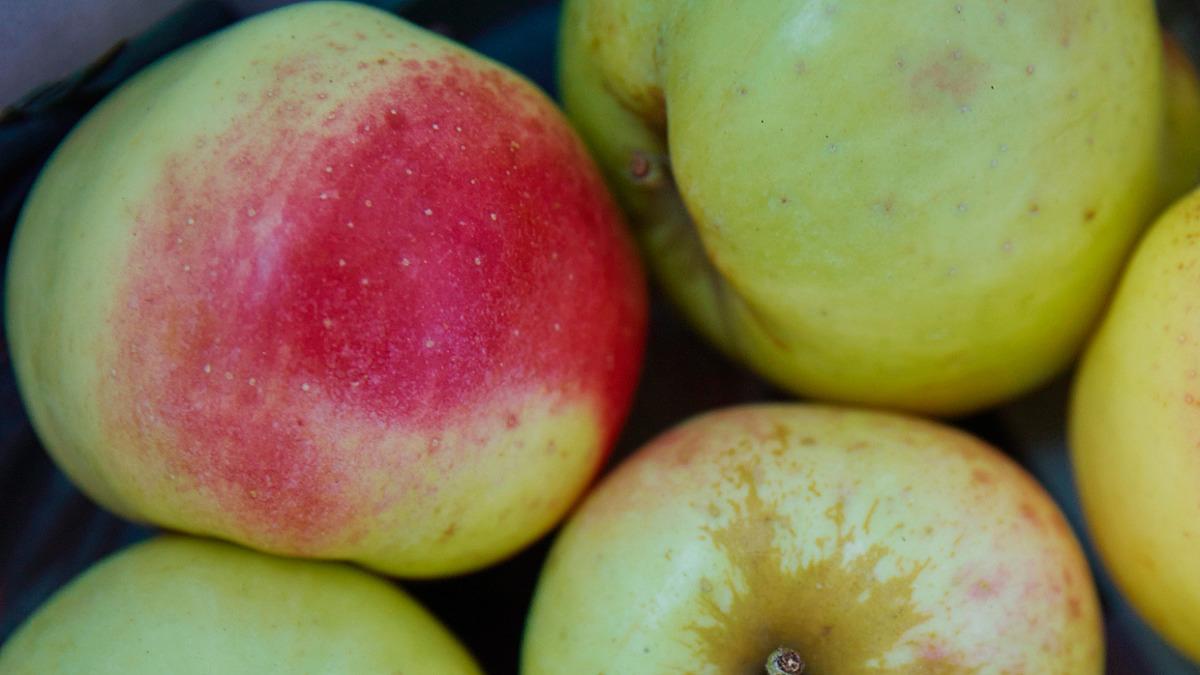 Tips för att minska fruktsvinnet