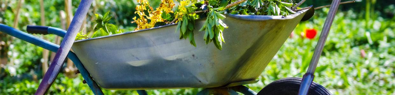 Skottkärra med trädgårdsavfall